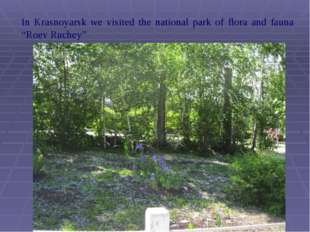 "In Krasnoyarsk we visited the national park of flora and fauna ""Roev Ruchey"""
