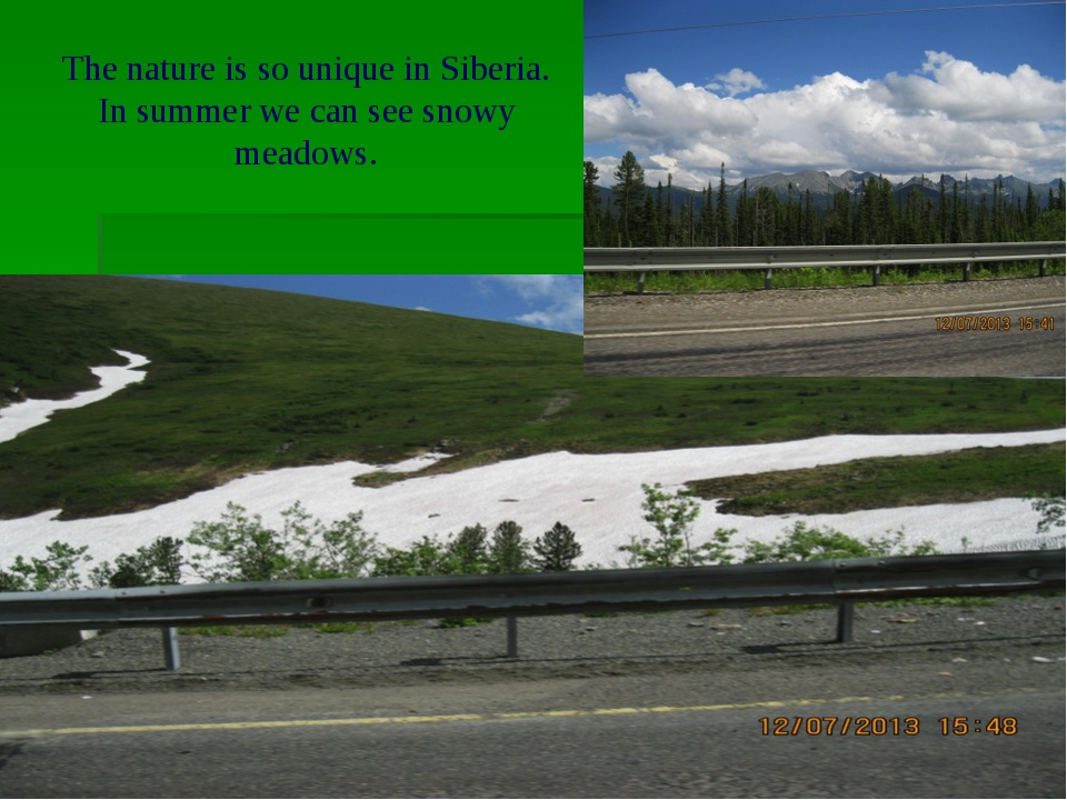 The nature is so unique in Siberia. In summer we can see snowy meadows.