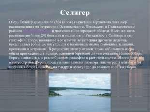 Озеро Селигер крупнейшее (260 кв.км.) из системы верхневолжских озер располож