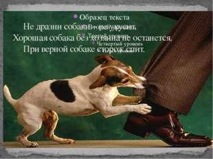 Не дразни собаки – не укусит. Хорошая собака без хозяина не останется. При