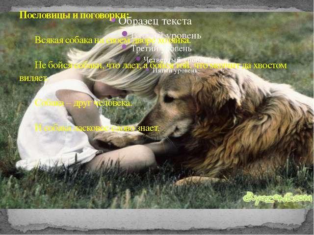 Пословицы и поговорки: Всякая собака на своем дворе хозяйка. Не бойся собак...