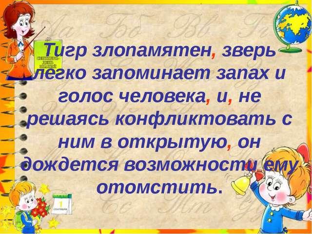 Тигр злопамятен, зверь легко запоминает запах и голос человека, и, не решаясь...