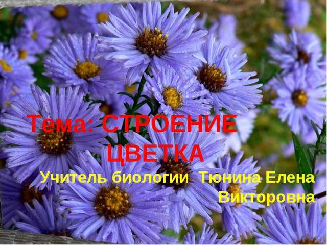 Тема: СТРОЕНИЕ ЦВЕТКА Учитель биологии Тюнина Елена Викторовна
