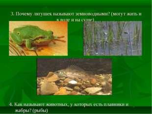 3. Почему лягушек называют земноводными? (могут жить и в воде и на суше) 4.