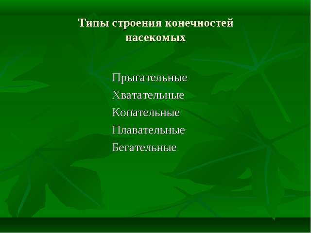 Типы строения конечностей насекомых Прыгательные Хватательные Коп...