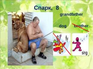 Спарк, 8 grandfather dogbrother