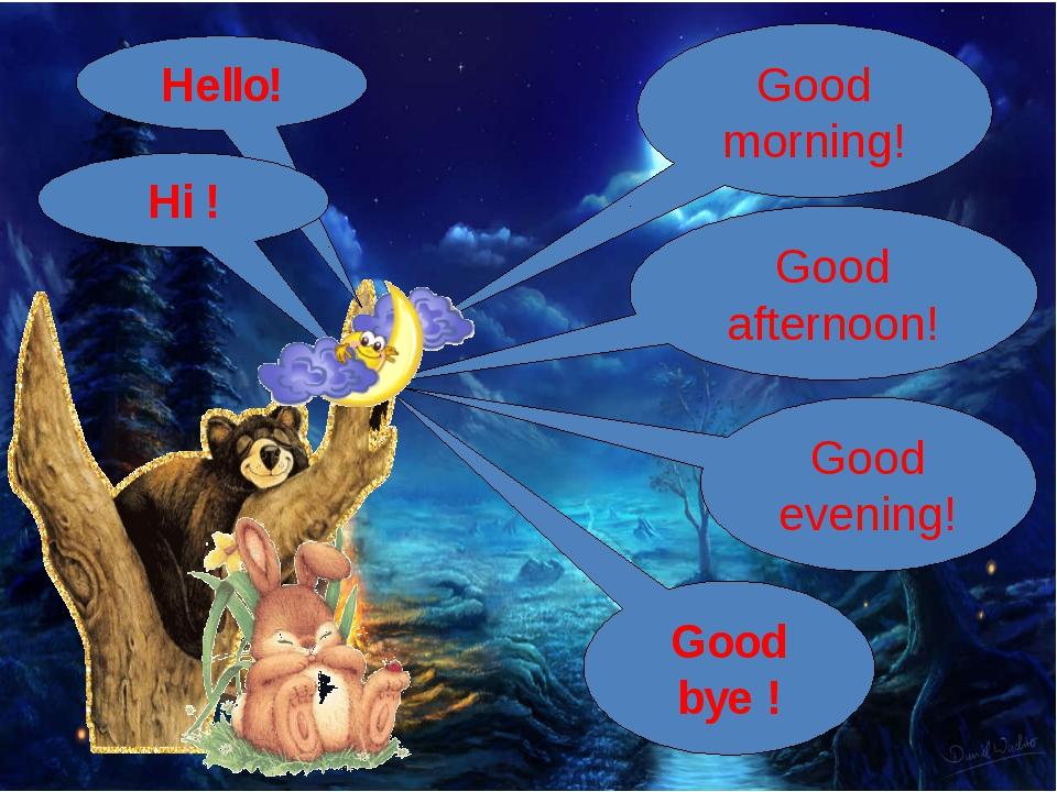 Hello! Hi ! Good bye ! Good morning! Good afternoon! Good evening!