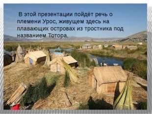 В этой презентации пойдёт речь о племени Урос, живущем здесь на плавающих ос