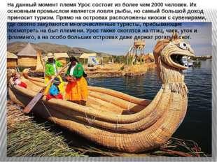 На данный момент племя Урос состоит из более чем 2000 человек. Их основным пр