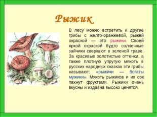 Рыжик В лесу можно встретить и другие грибы с желто-оранжевой, рыжей окраской