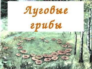 Луговые грибы