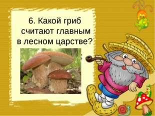 6. Какой гриб считают главным в лесном царстве? подберёзовик боровик груздь