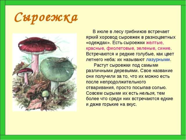 Сыроежка В июле в лесу грибников встречает яркий хоровод сыроежек в разноцвет...