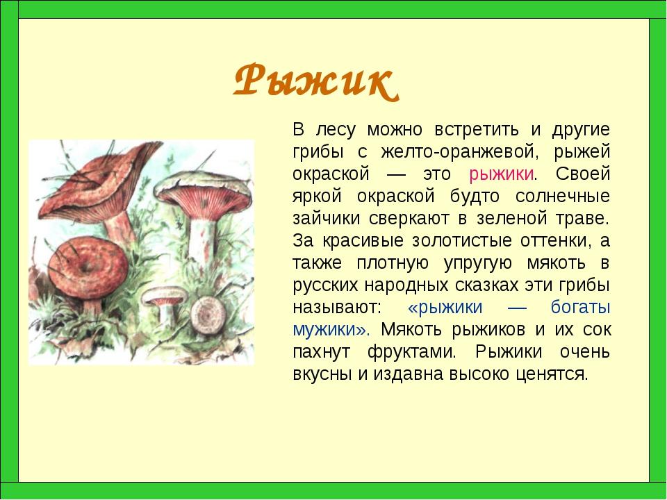 Рыжик В лесу можно встретить и другие грибы с желто-оранжевой, рыжей окраской...