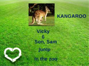 KANGAROO Vicky 6 Son, Sam In the zoo