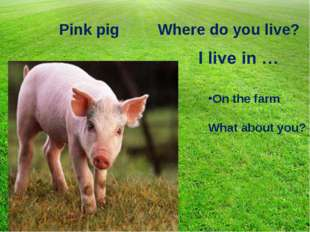 Pink pig Where do you live? On the farm What about you?