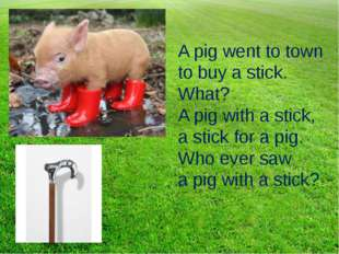 A pig went to town to buy a stick. What? A pig with a stick, a stick for a pi