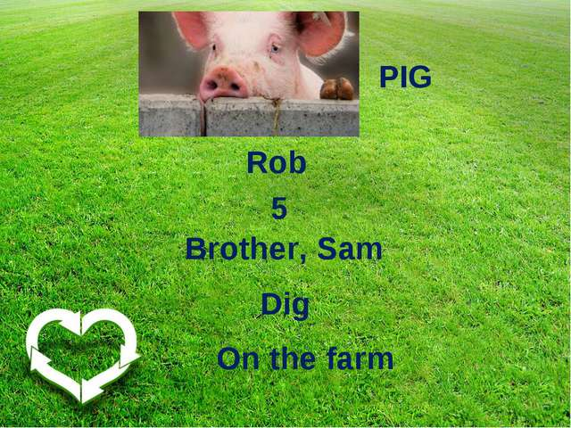 5 Rob Brother, Sam On the farm PIG Dig