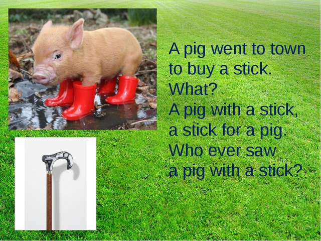 A pig went to town to buy a stick. What? A pig with a stick, a stick for a pi...