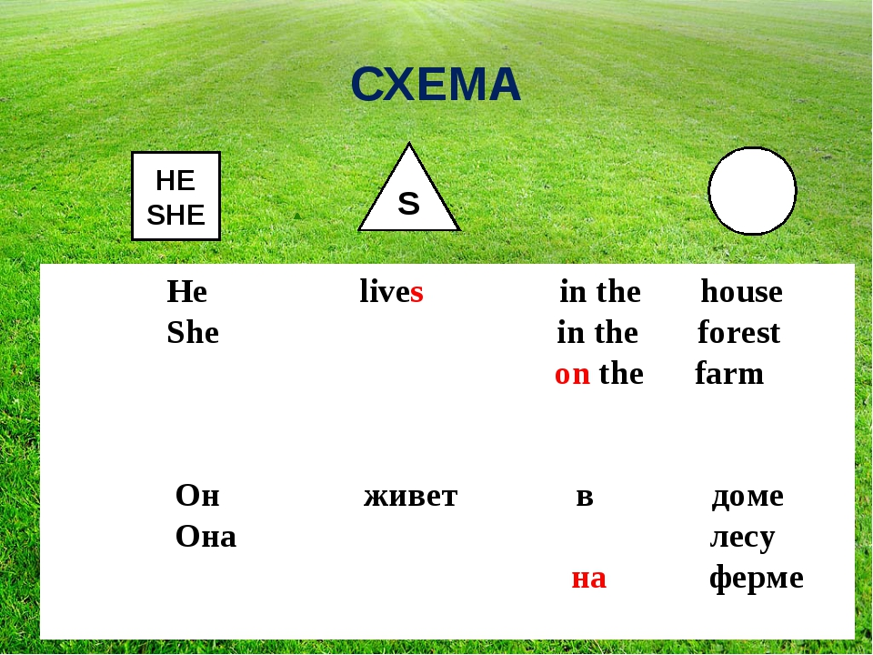 СХЕМА HE SHE S He lives in the house She in the forest on the farm Он живет в...