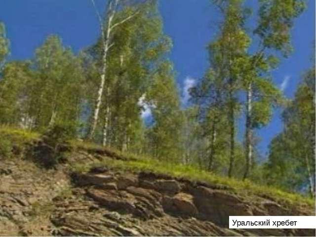 Уральский хребет