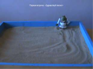 Первая встреча: «Здравствуй песок!»