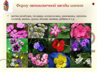 Форму пятиконечной звезды имеют цветки незабудки, гвоздики, колокольчика, шип