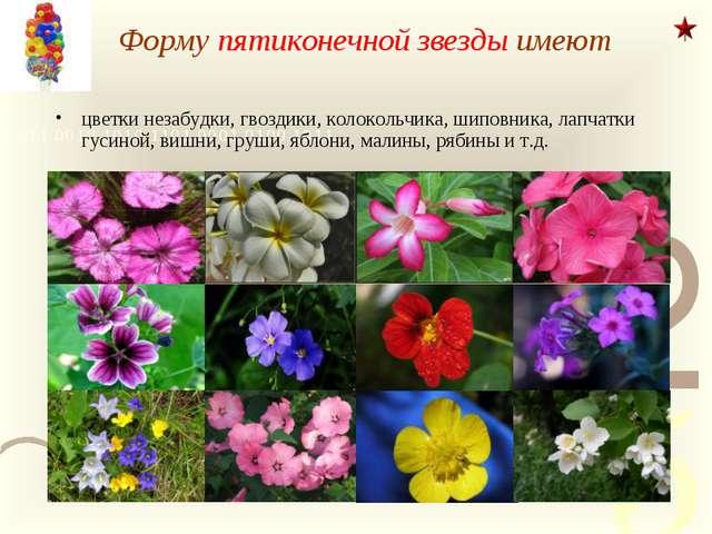 Форму пятиконечной звезды имеют цветки незабудки, гвоздики, колокольчика, шип...