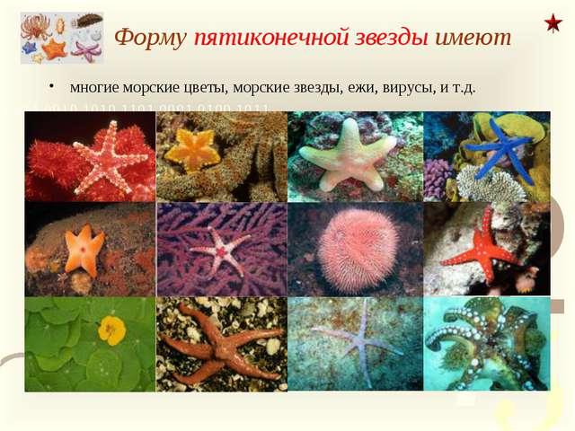 Форму пятиконечной звезды имеют многие морские цветы, морские звезды, ежи, ви...