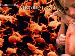Свертывание крови