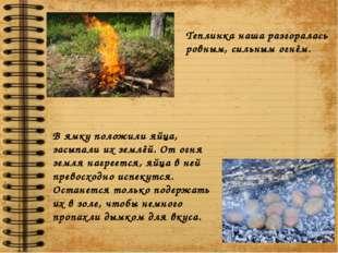 Теплинка наша разгоралась ровным, сильным огнём. В ямку положили яйца, засыпа