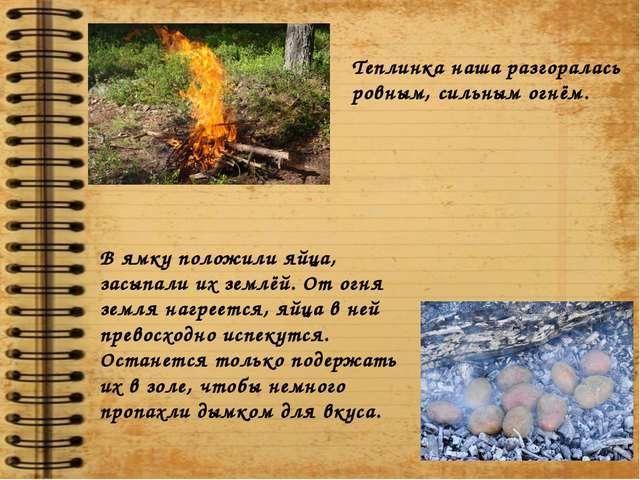 Теплинка наша разгоралась ровным, сильным огнём. В ямку положили яйца, засыпа...
