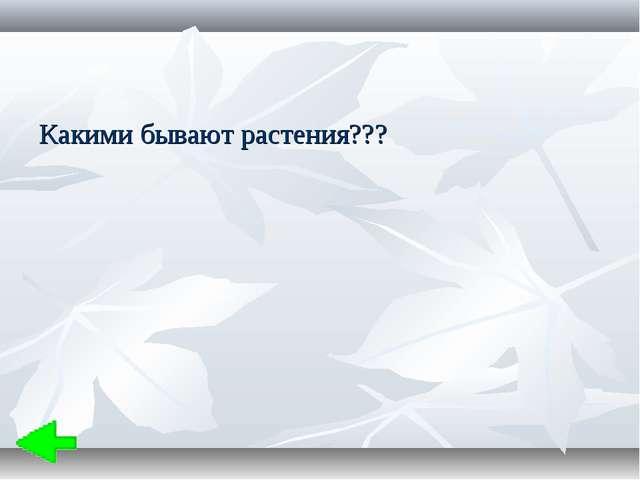 Какими бывают растения???