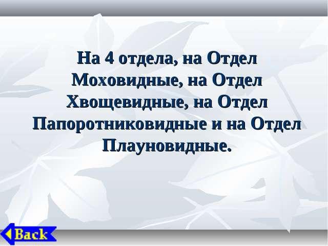 На 4 отдела, на Отдел Моховидные, на Отдел Хвощевидные, на Отдел Папоротников...