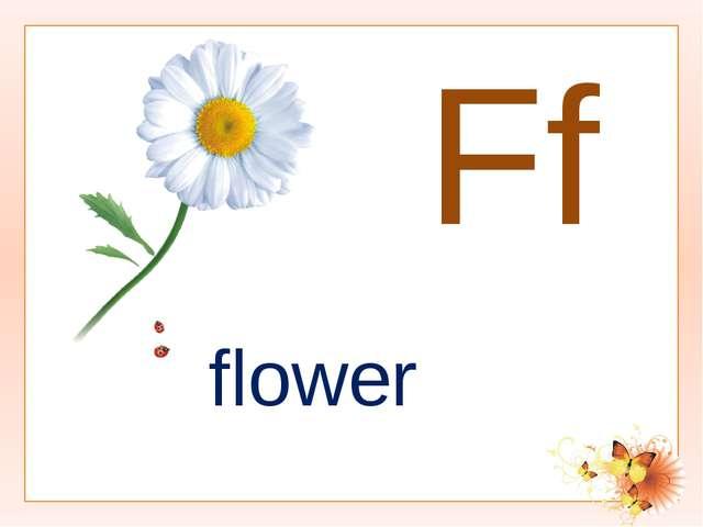 Ff flower