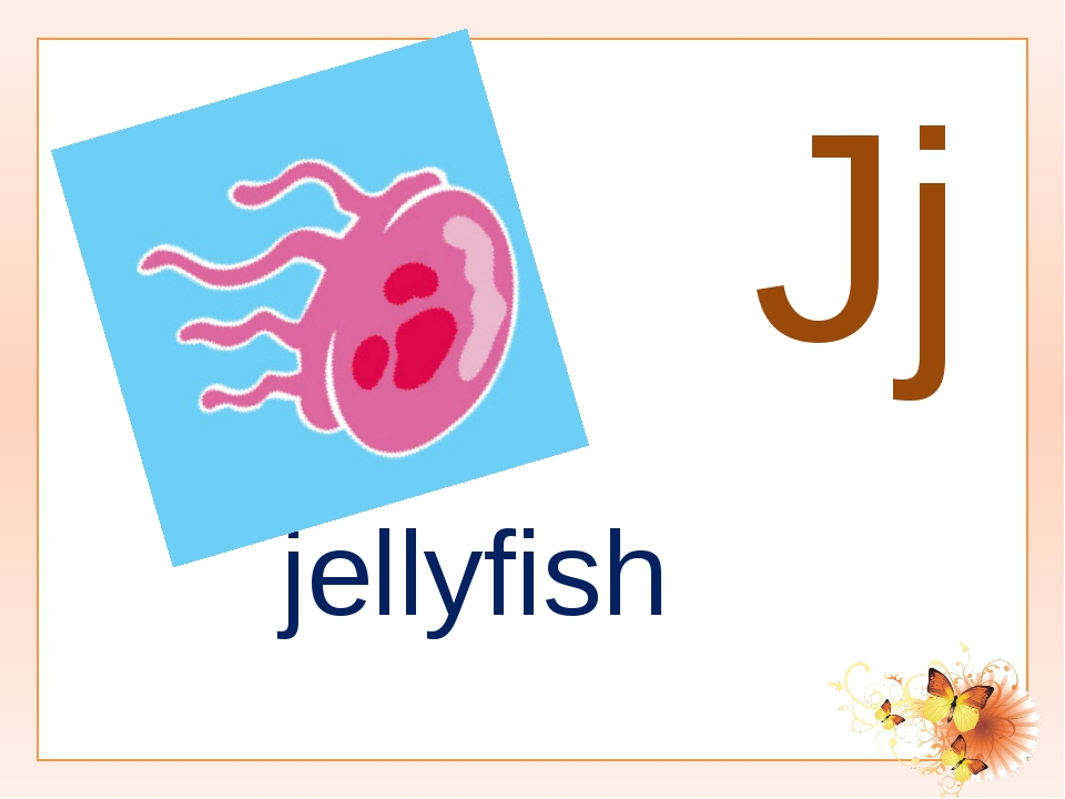 Jj jellyfish