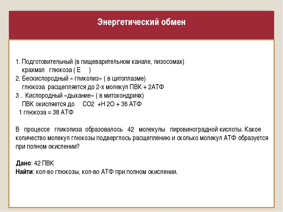 Энергетический обмен 1. Подготовительный (в пищеварительном канале, лизосомах...