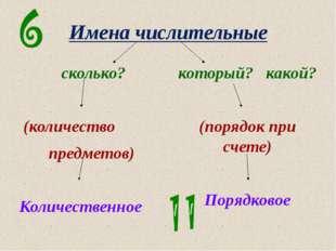 Имена числительные сколько? (количество предметов) Количественное который? ка