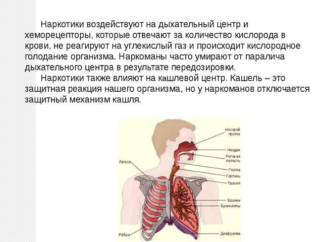 Наркотики воздействуют на дыхательный центр и хеморецепторы, которые отвечаю...