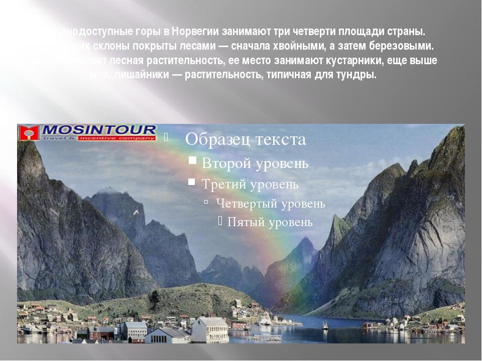 Труднодоступные горы в Норвегии занимают три четверти площади страны. Нередко...