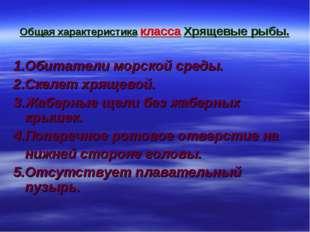 Общая характеристика класса Хрящевые рыбы. 1.Обитатели морской среды. 2.Скеле