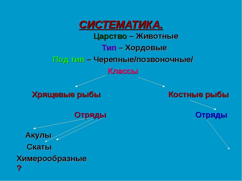 СИСТЕМАТИКА. Царство – Животные Тип – Хордовые Под тип – Черепные/позвоночные...