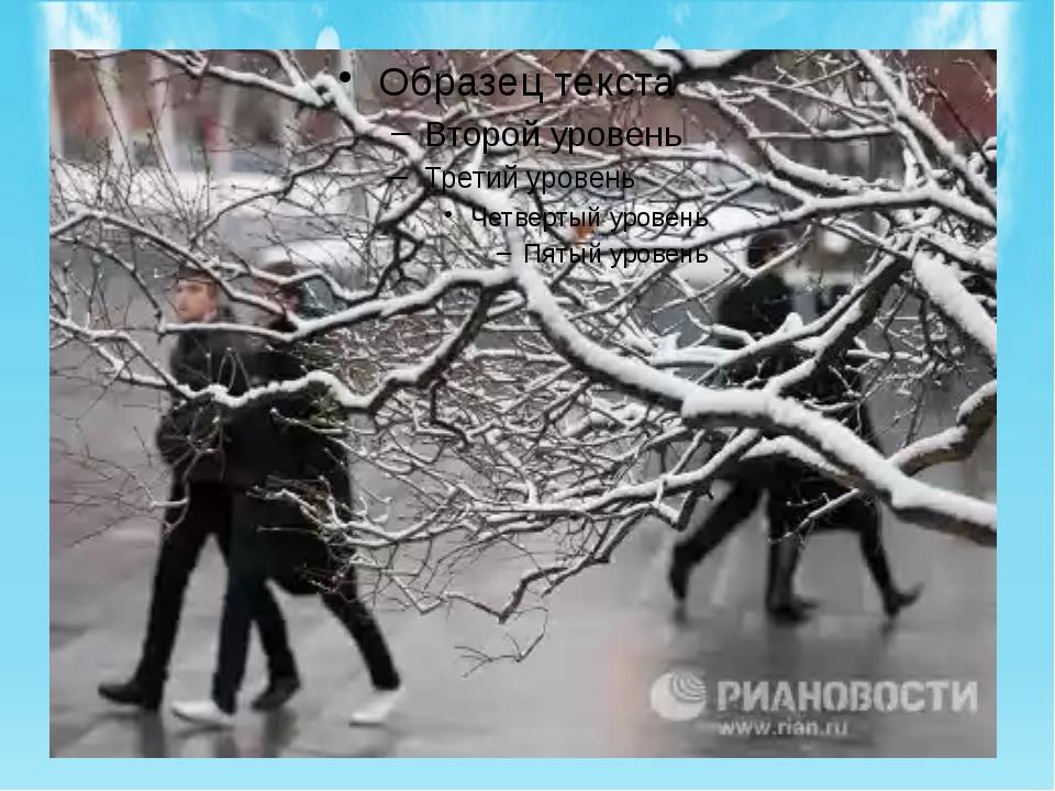 Начало холодного зимнего периода приходится на ноябрь. Продолжительность зим...