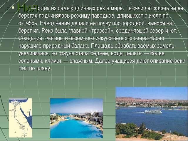 Нил   — одна из самых длинных рек вмире. Тысячи лет жизнь на ее берегах по...