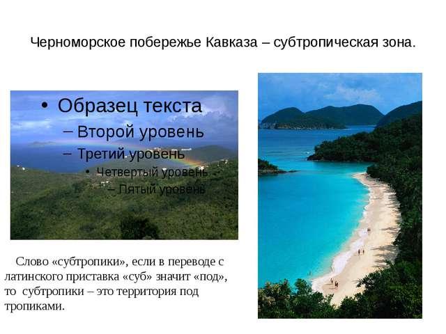 Черноморское побережье Кавказа – субтропическая зона. Слово «субтропики», есл...