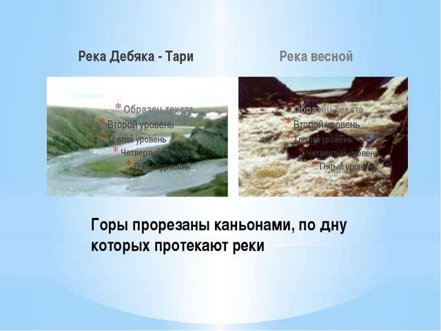 Река Дебяка - Тари Река весной Горы прорезаны каньонами, по дну которых проте...