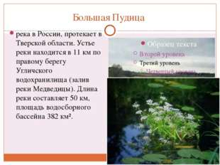 Большая Пудица река в России, протекает в Тверской области. Устье реки находи
