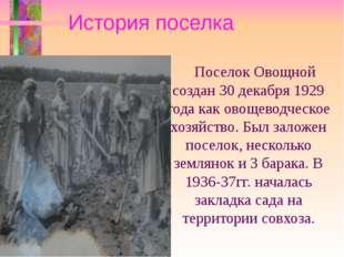 История поселка Поселок Овощной создан 30 декабря 1929 года как овощеводческ