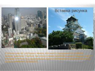 В Японии уже нет свободных земель, всё занято городскими постройками, полями