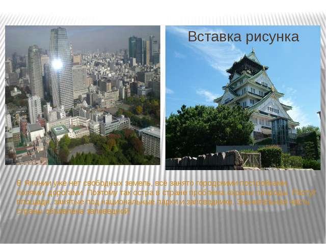В Японии уже нет свободных земель, всё занято городскими постройками, полями...